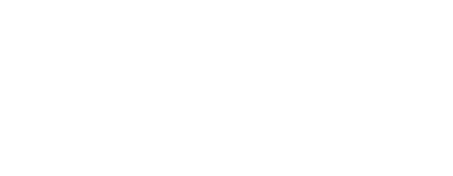 Our Dyslexic Journey